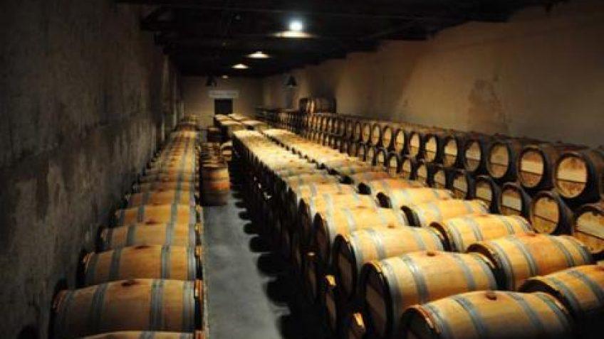 diferencias entre vinos